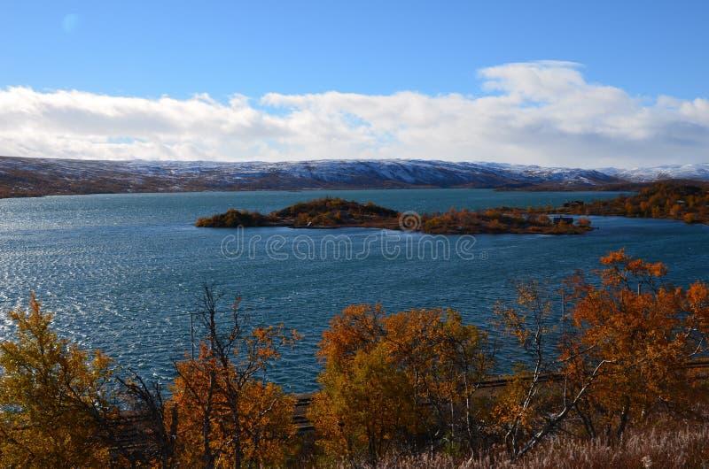 Jesienne krajobrazy norweskiej natury z wodą i drzewami fotografia royalty free