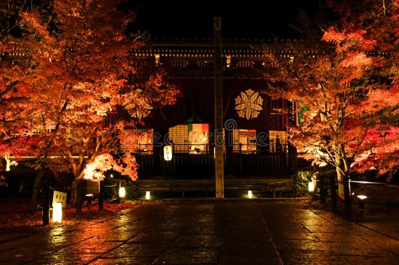 Jesienne liście Kioto w nocy fotografia royalty free
