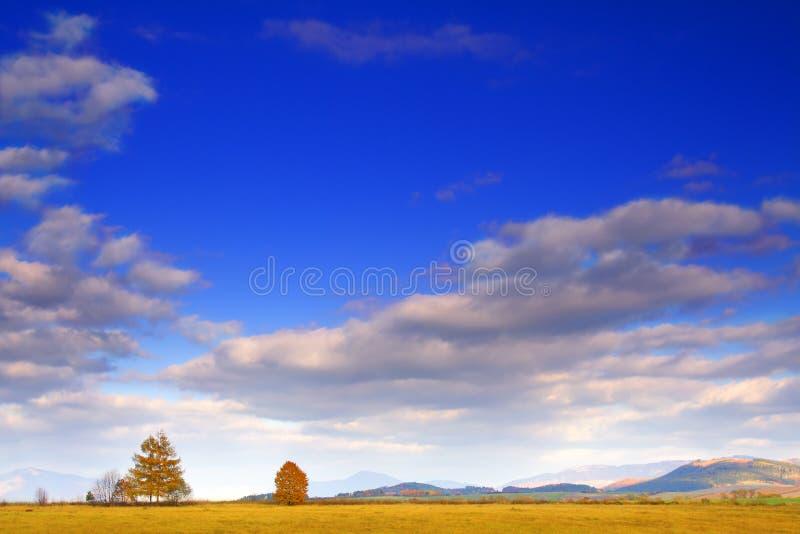 jesienne niebo obrazy stock