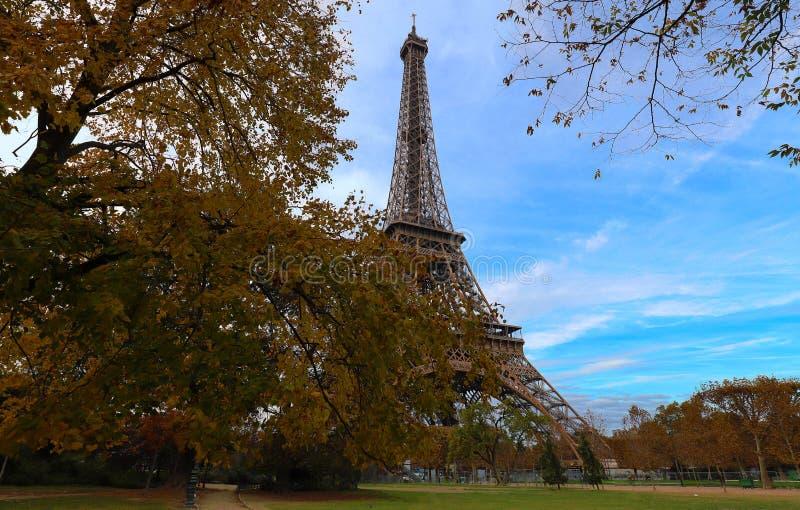 Jesienni drzewa w przedpolu i wieża eifla, Paryż obrazy royalty free
