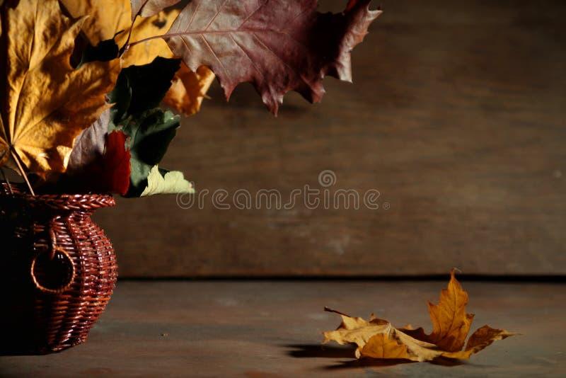 jesienny życie wciąż obraz royalty free