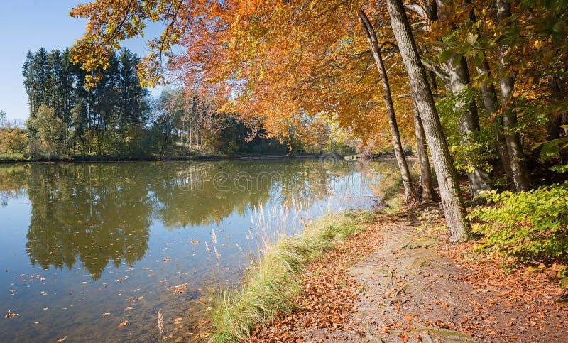Jesienny chodzący sposób wzdłuż idyllicznego stawu zdjęcia royalty free