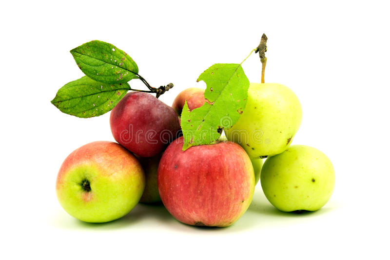 jesienny jabłko stos obrazy royalty free