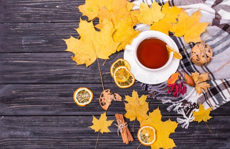 Jesienny mieszkanie k?a?? z szalikiem i gor?c? fili?ank? herbata i spada? li?cie Odg?rnego widoku wci?? ?ycie reprezentuje jesien obraz stock