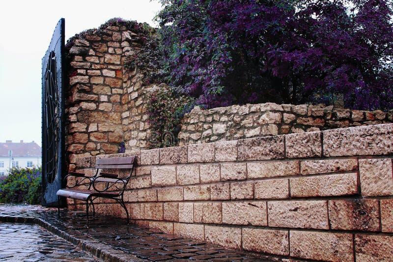 Jesienny nastrój, ławka w parku obrazy royalty free