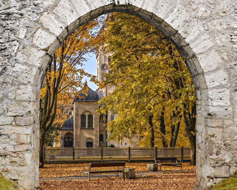 Jesienny park w Jurmala, Dubulti, Latvia obrazy royalty free