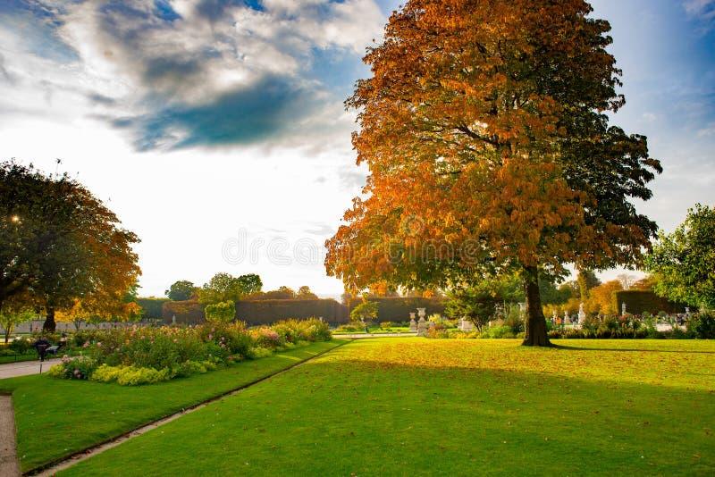 Jesienny Paryż, Tuileries ogród - zdjęcie stock