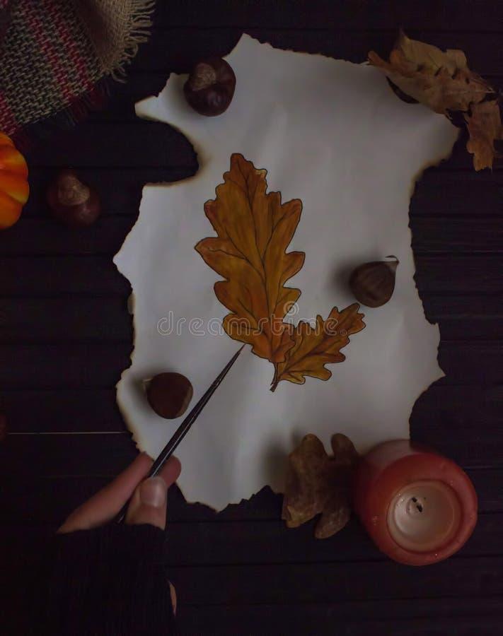 Jesienny rysunek kolorowi liście zdjęcia royalty free
