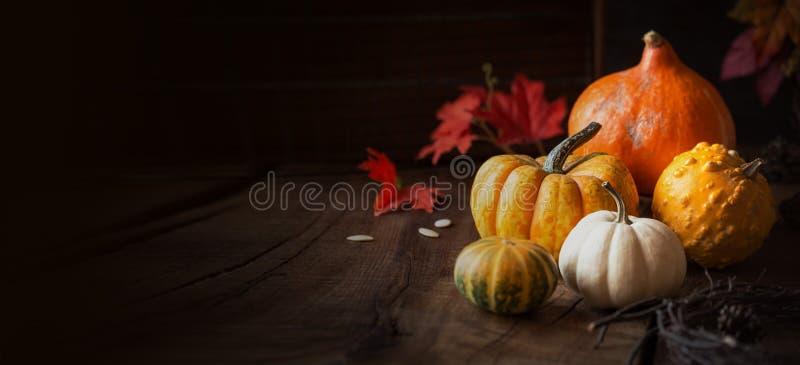 Jesienny sztandar z kopii przestrzenią zdjęcie stock