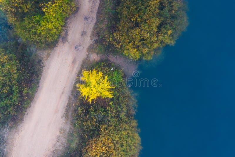 Jesienny widok z lotu ptaka Droga z drzewami żółtymi i zielonymi przez jezioro Jezioro niebieskie na przejściu drogowym Przyroda  fotografia stock