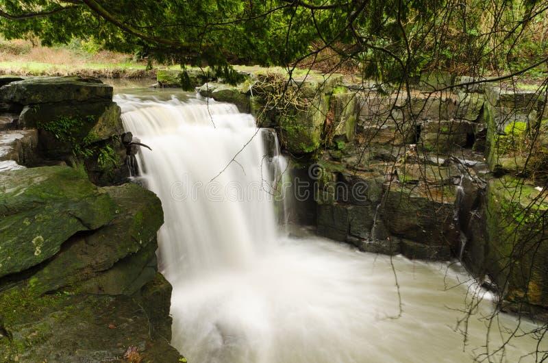 Jesmond Dene vattenfall arkivfoto