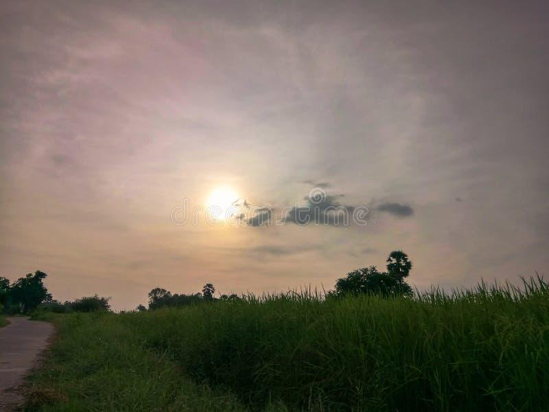 Jest światłem słonecznym zdjęcie royalty free