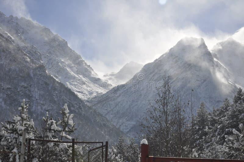 jest całkowicie szczęśliwy i jeśli obraz góry dziękuję zimy są używane w, obrazy royalty free