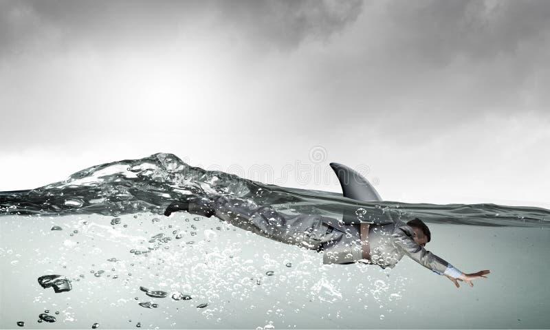 Jest niebezpieczny jak rekin Mieszani środki obrazy stock