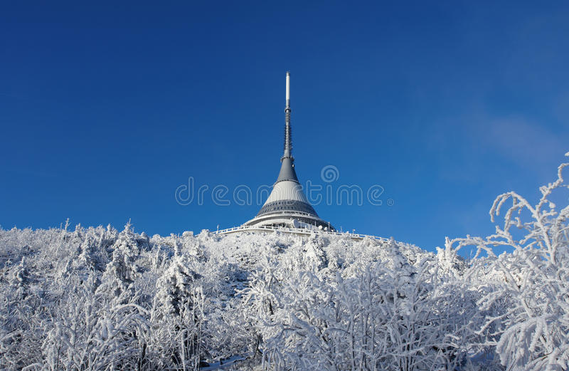 Download Jested With Trees In Winter Stock Photos - Image: 17772063