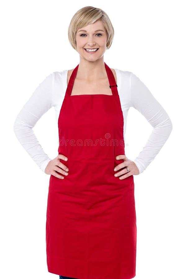 Jestem nowym szefem kuchni tutaj obrazy stock