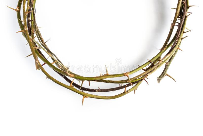Jesus Christ Crown Thorns no fundo branco isolado imagens de stock royalty free