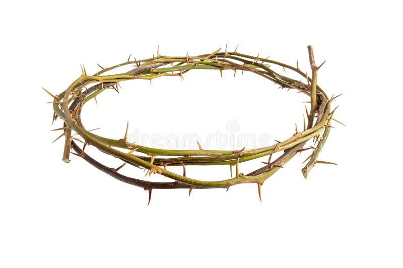 Jesus Christ Crown Thorns p? isolerad vit bakgrund arkivfoton