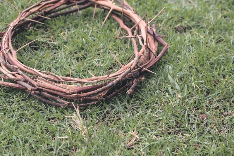 Jesus Christ Crown Thorns sul prato inglese dell'erba del giardino con la stazione termale della copia fotografia stock libera da diritti