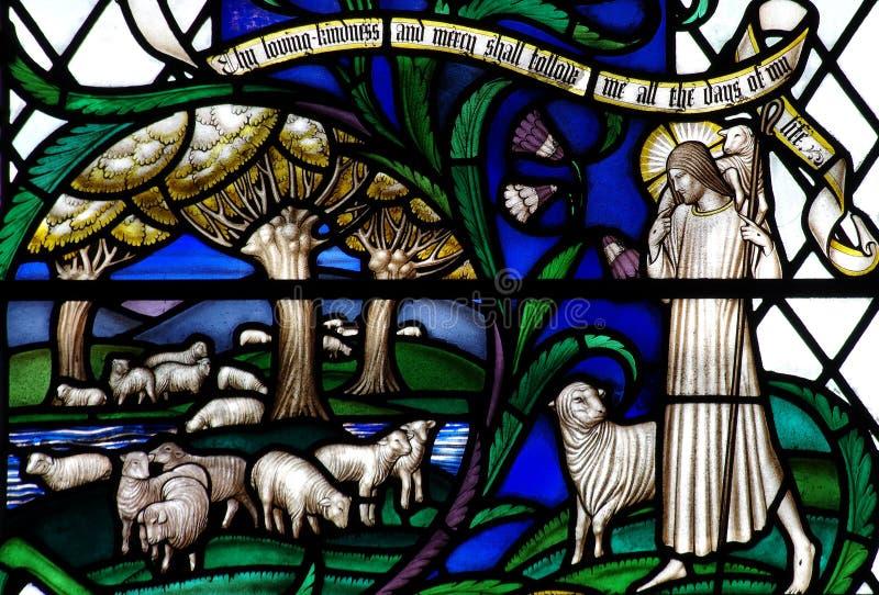 Jesus Christ de Goede Herder met schapen in gebrandschilderd glas stock fotografie