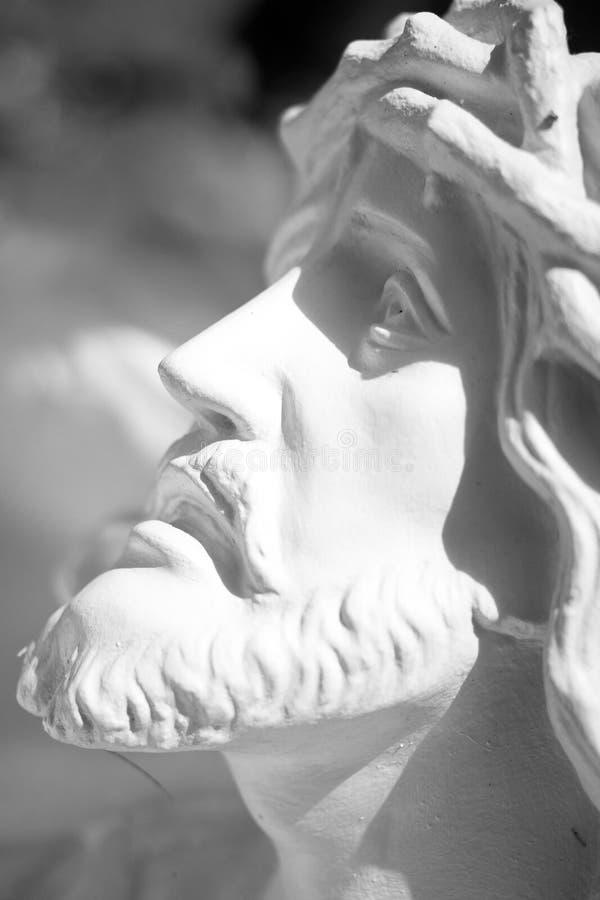 Jesus Christ Face met doornen royalty-vrije stock foto