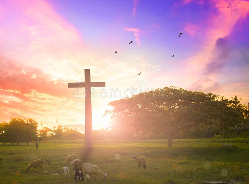 Jesus christ mercy at cross on mountain sunset background He belief to worship son of god stock photography