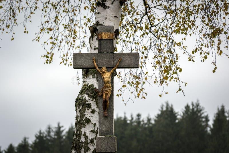 Jesus Christ sur la croix sous le tilleul blanc photos libres de droits
