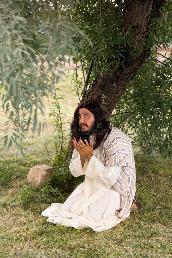 Jesus no jardim das azeitonas imagens de stock royalty free
