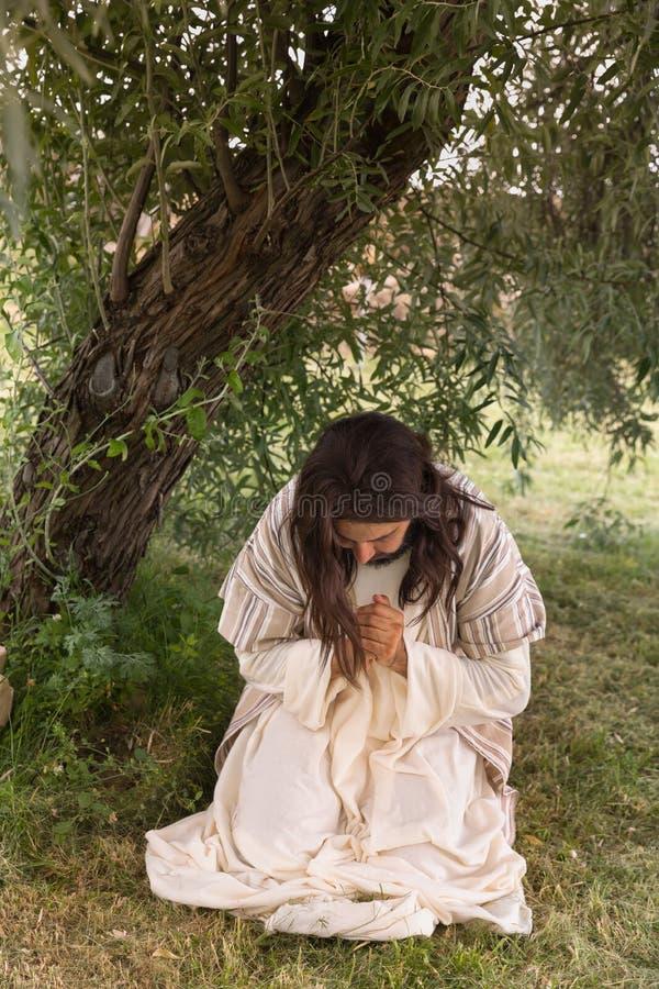 Jesus que ajoelha-se na agonia em Gethsemane imagem de stock