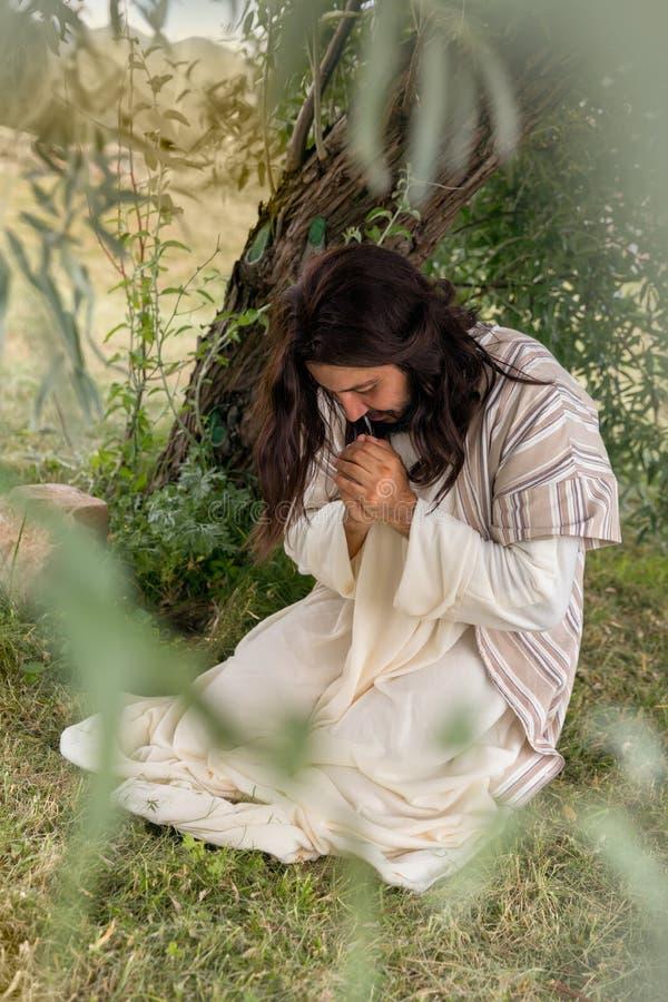 Jesus que reza no Monte das Oliveiras imagens de stock