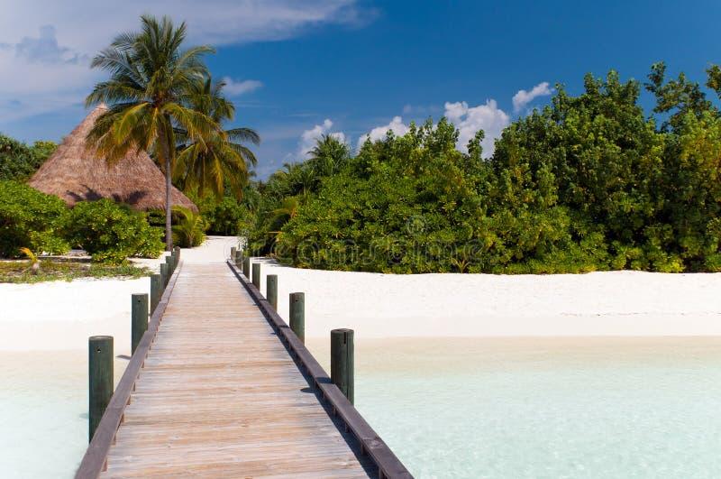 Jetée à une plage tropicale photo stock