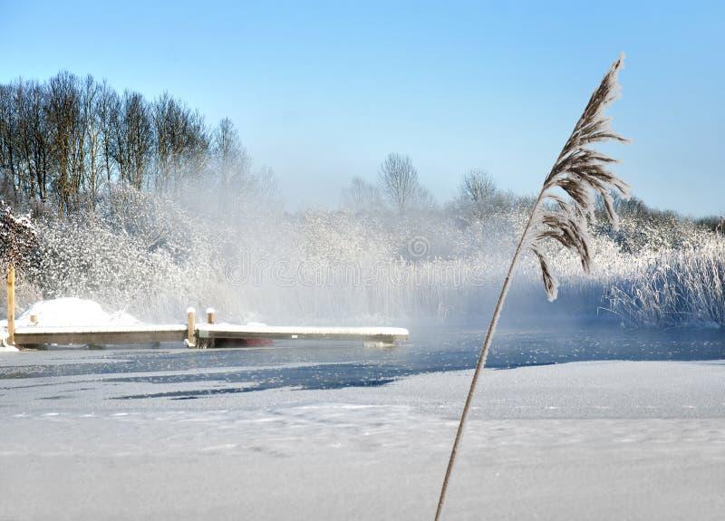 Jetée dans le lac en hiver photo libre de droits