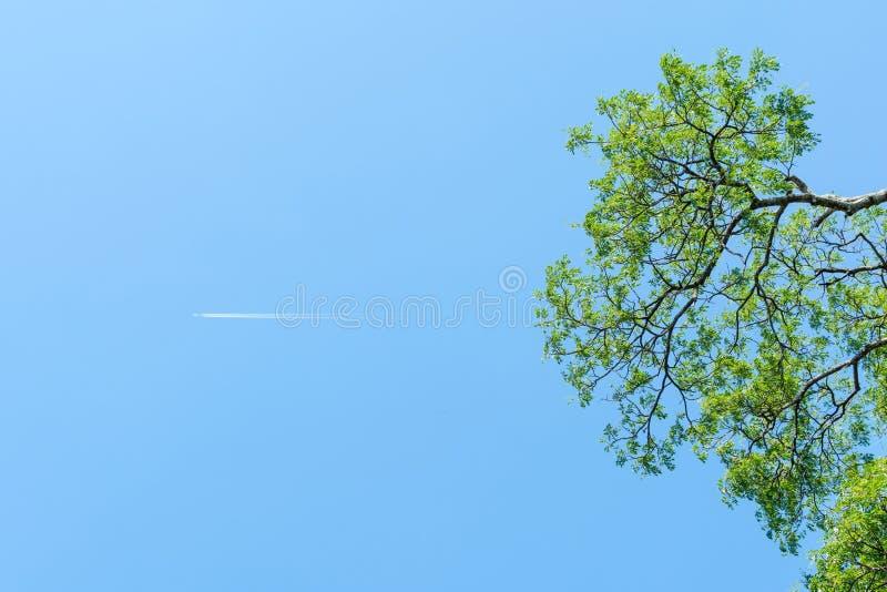 Jet Trail lizenzfreie stockfotografie
