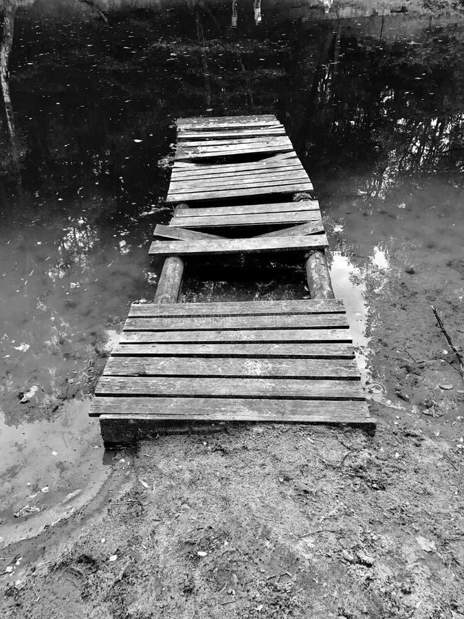 Jetez un pont sur la forêt blanche noire de lac de l'eau d'arbre de bureau image stock