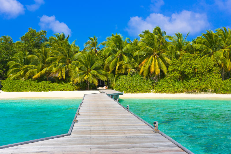 Download Jetty, beach and jungle stock photo. Image of destinations - 12092942