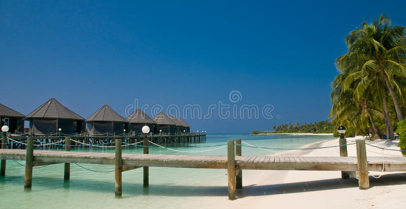 Jetty on a tropical beach royalty free stock photo