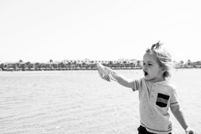 Jeu d'enfant avec le coquillage sur le paysage marin ensoleillé Petit garçon avec la coquille sur la plage de mer Liberté, découv images stock