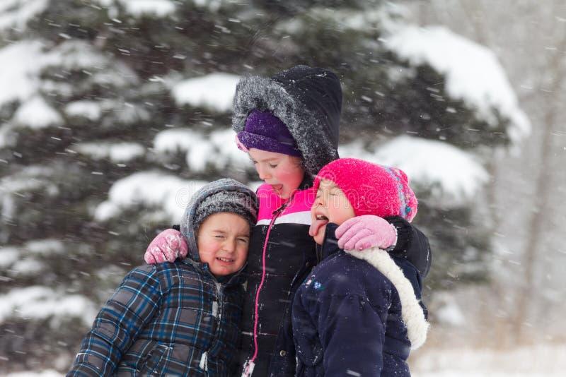 Jeu dans la neige photo libre de droits