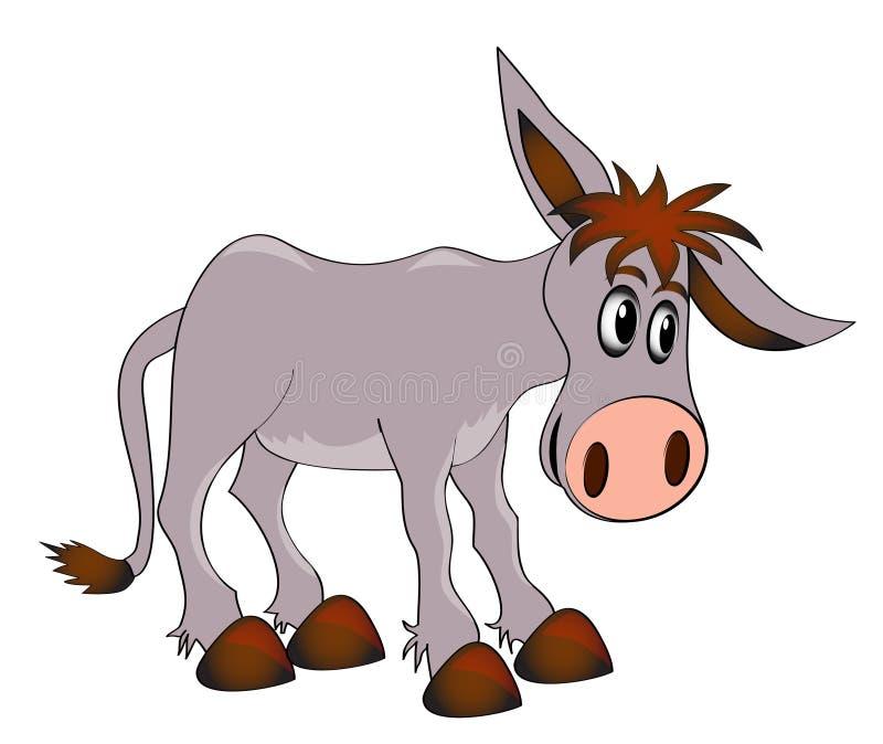 Jeune âne avec du charme sur le fond blanc illustration stock