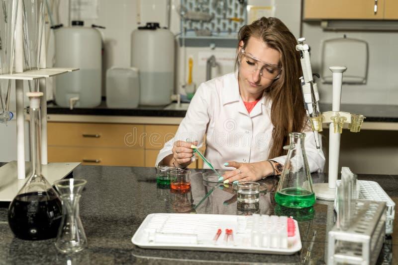 Jeune échantillonnage femelle de technicien de laboratoire avec la solution liquide chimique de pipette dans le laboratoire photo libre de droits