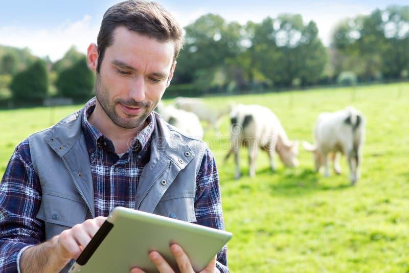 Jeune agriculteur attirant à l'aide du comprimé dans un domaine photos stock