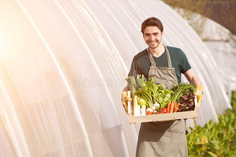 Jeune agriculteur d'affaires travaillant à la ferme photos stock