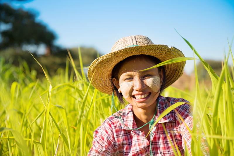 Jeune agriculteur de femelle de Myanmar photos stock