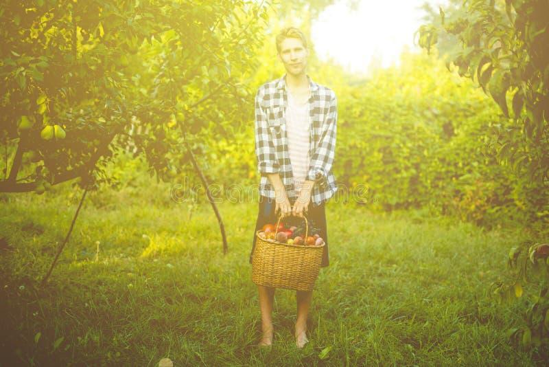 Jeune agriculteur masculin tenant un panier avec les fruits et légumes rassemblés de récolte dans une ferme de jardin photos stock