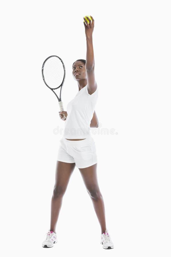 Jeune balle de tennis de portion de femme d'Afro-américain sur le fond blanc photo stock