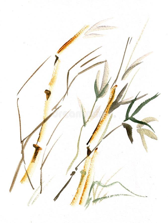 Jeune bambou sur le vent illustration libre de droits