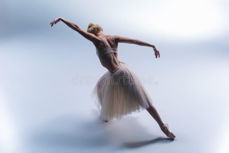 Jeune beau danseur moderne de style posant sur un fond de studio photos libres de droits