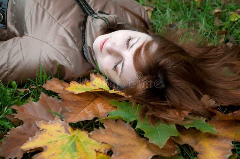 Jeune beau gingembre se trouvant sur les lames d'automne photos stock
