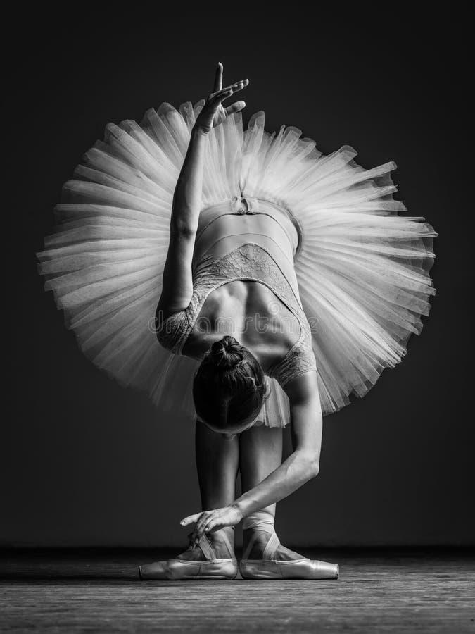 Jeune belle ballerine posant dans le studio photos libres de droits