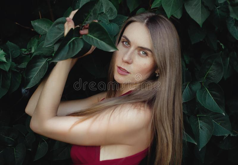 Jeune belle femme images stock